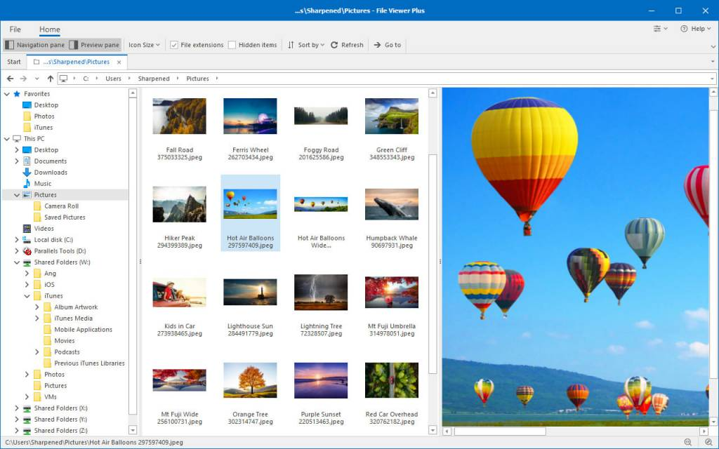 File Viewer Plus free download